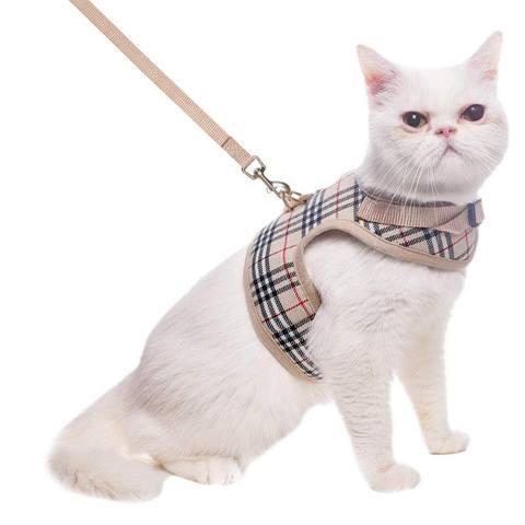 BINGPET CH03_M Escape Proof Cat Harness