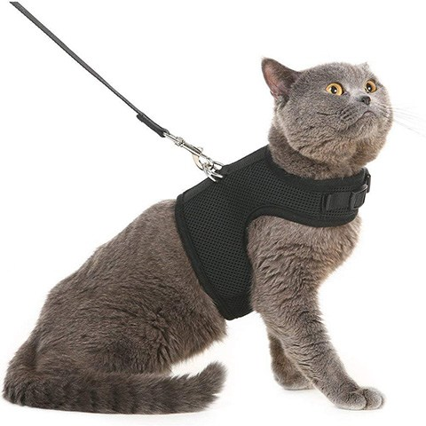 PUPTECK PUP17CH02_BLKM Escape Proof Cat Harness