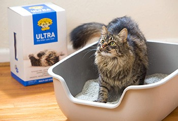 Premium Clumping Cat Litter-Dr. Elseys-Amazon