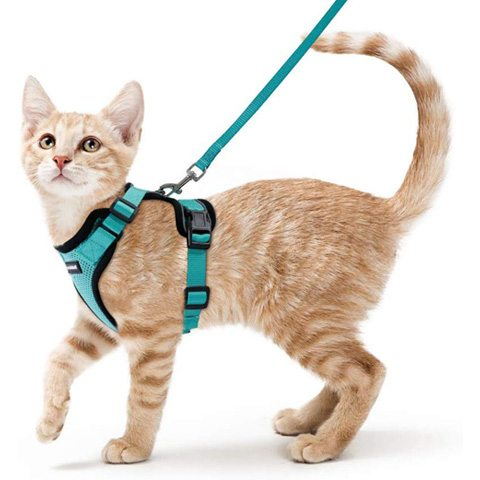 Rabbitgoo Cat Harness