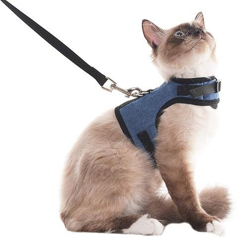 SCENEREAL SH011-02 Harnais anti-évasion pour chat
