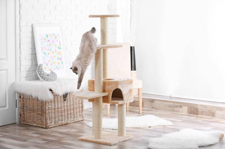 Cole and Marmalade 5 Step Cat Tree