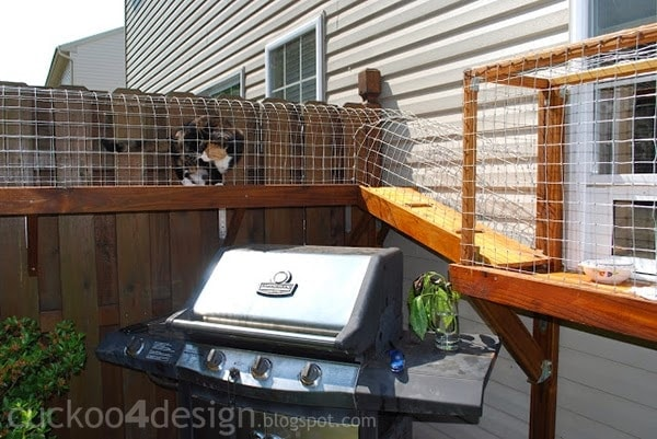 Cuckoo 4 Design Easy DIY Cat Enclosure