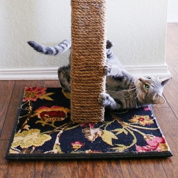 Dream a Little Bigger DIY Cat Scratching Post