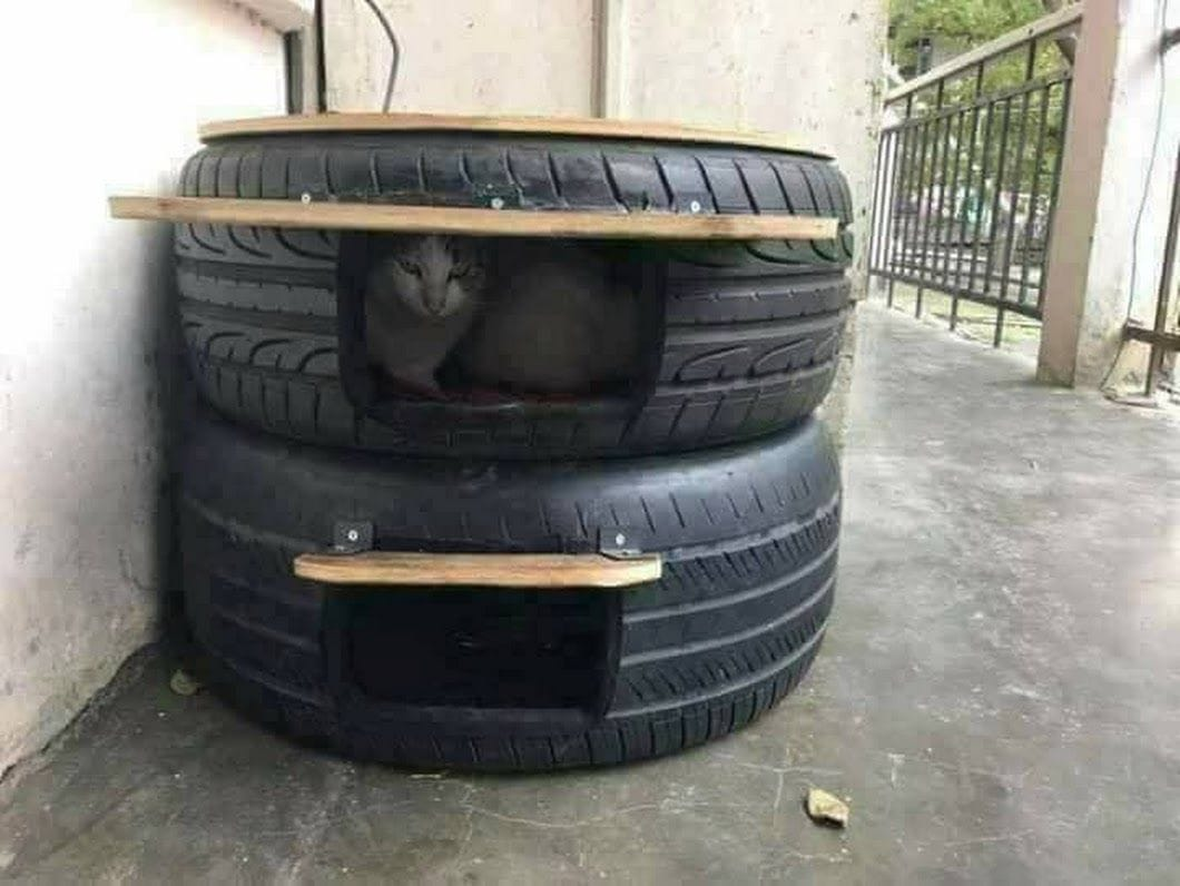 Easy Tire Cat House by How2