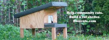 Fiver Cats Community Cat Shelter