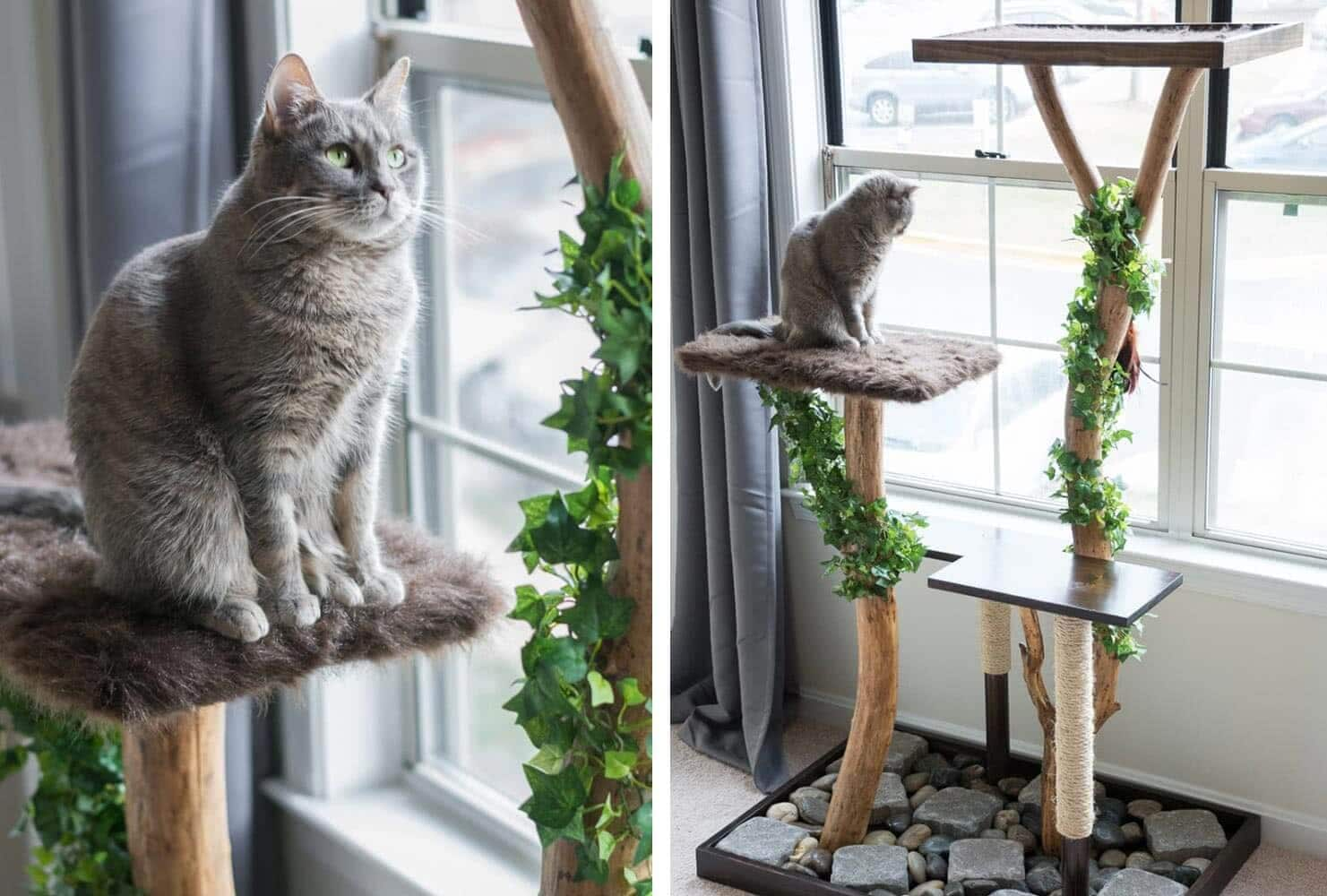 Real Cat Tree by Brittany Goldwyn