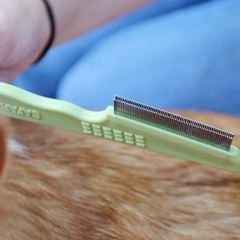 Safari Flea Comb with Double Row of Teeth