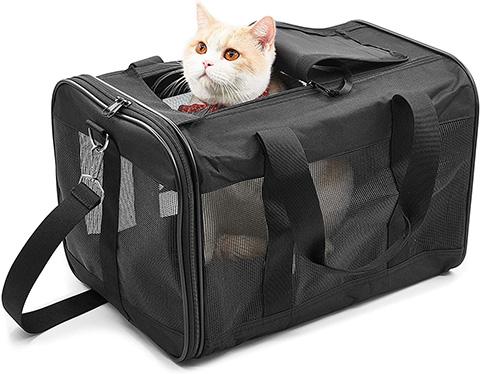 ScratchMe Pet Travel Carrier