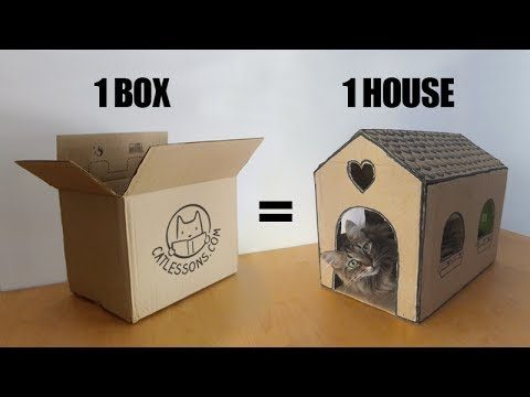 Simple Cardboard Cat House by Cat Lessons
