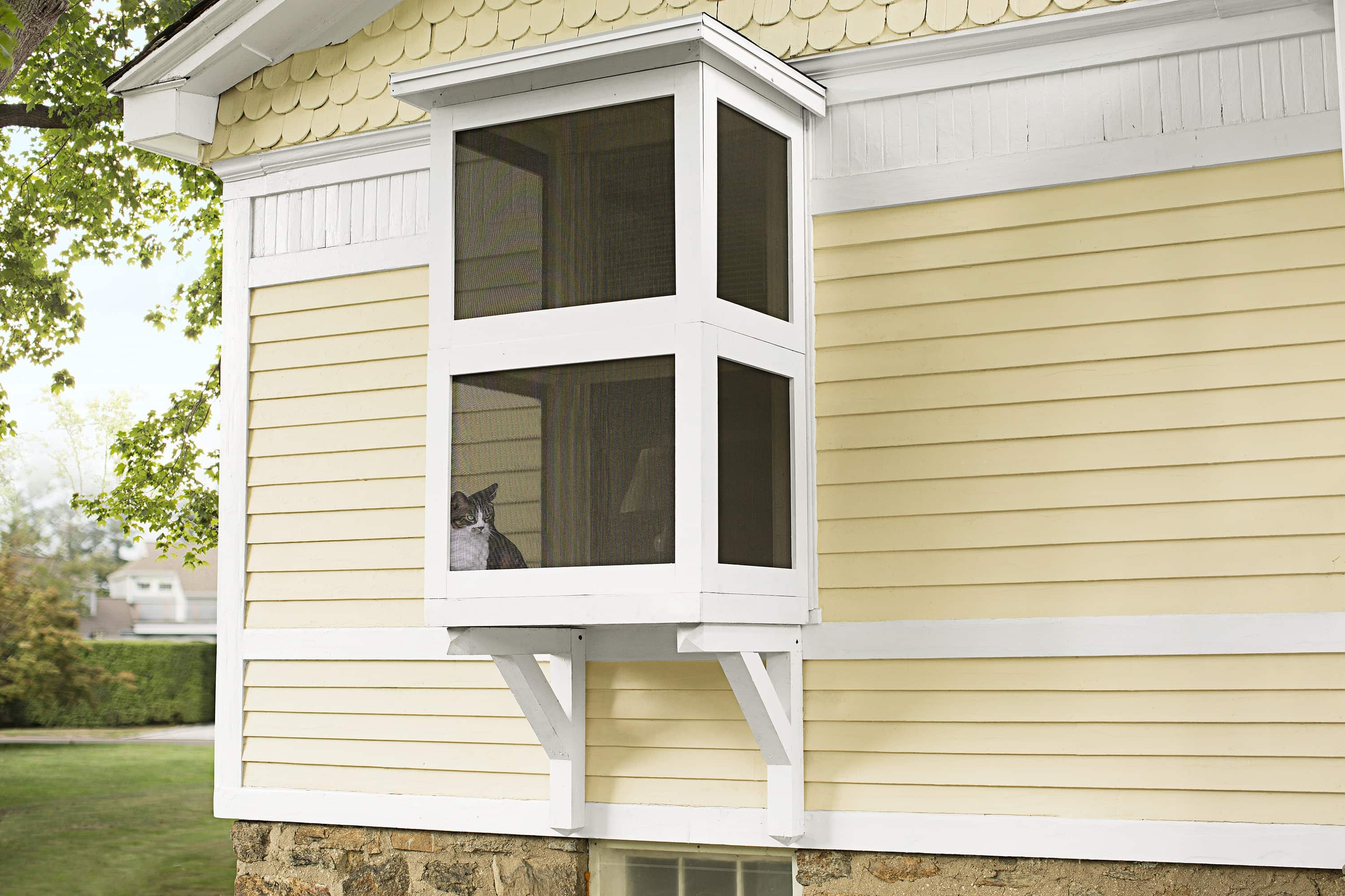 This Old House Catio