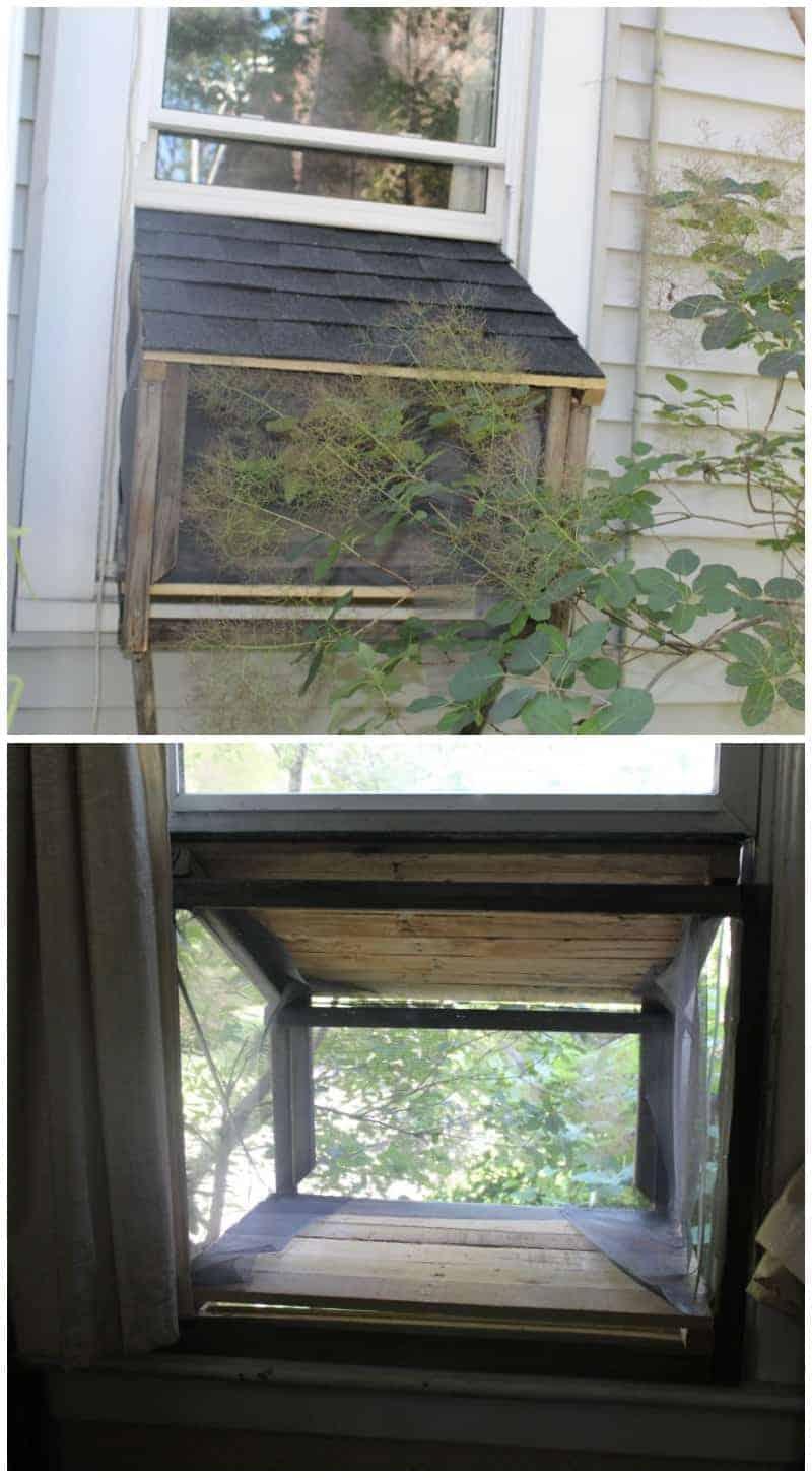 Window Box Cat Enclosure from Kori at Home