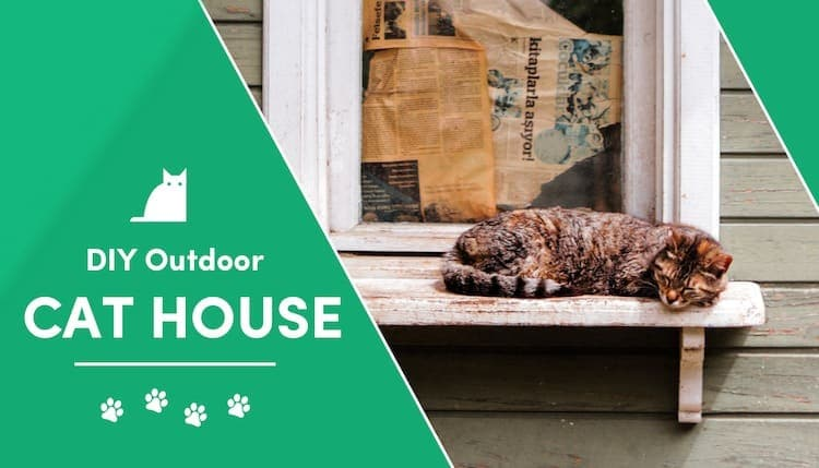 11 Diy Outdoor Cat House Plans You Can Make Today With Pictures Excitedcats