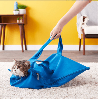 Cat-in-the-bag