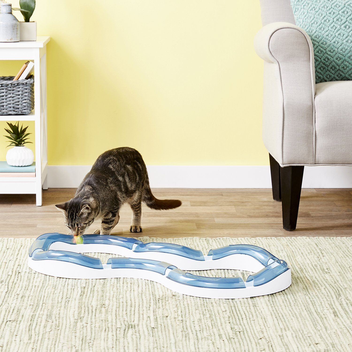 Catit Design Senses Circuit Cat Toy-FI