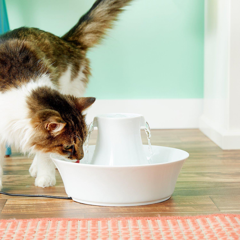 PetSafe Drinkwell Avalon Pet Fountain-FI