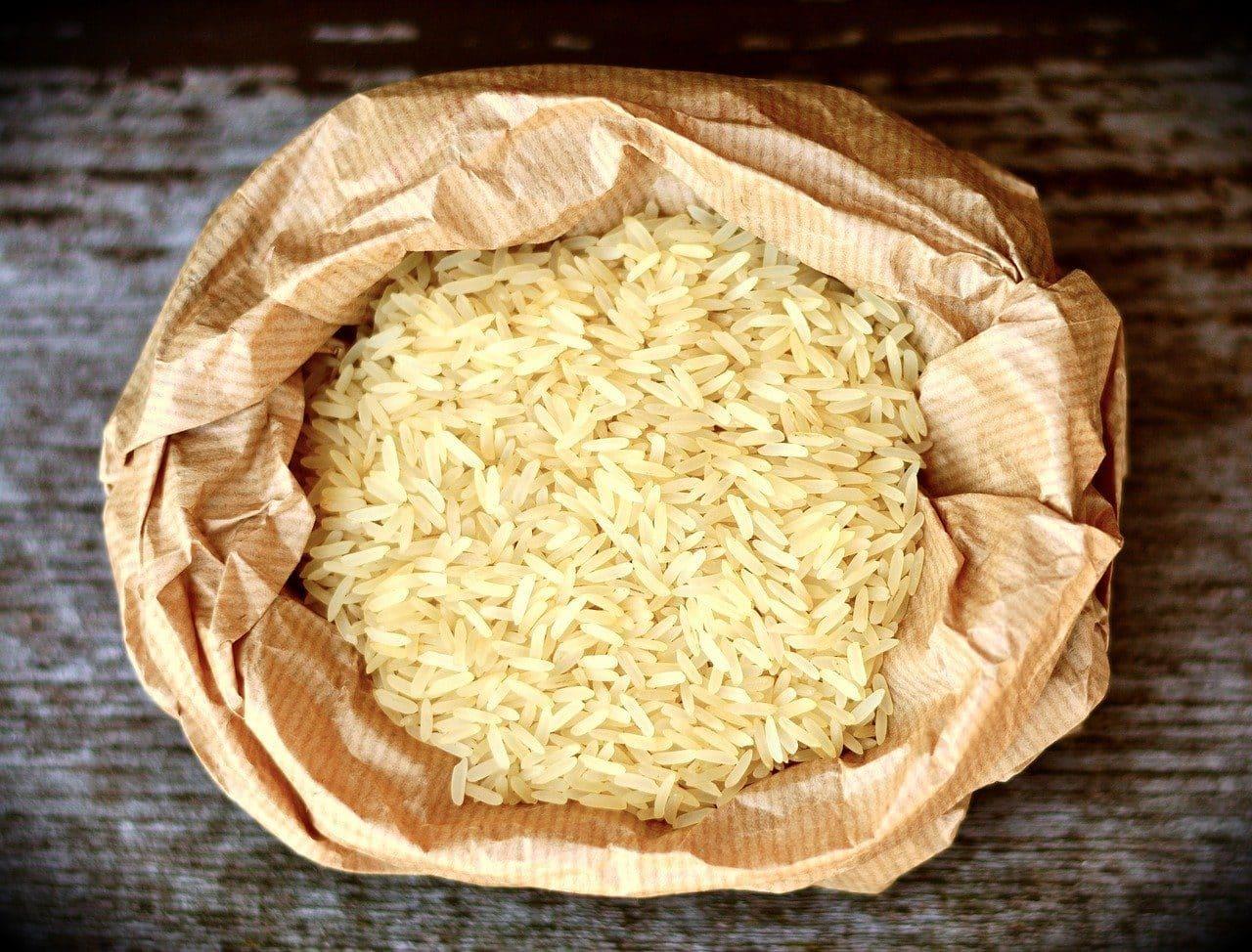 rice grains