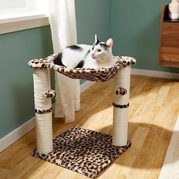 Cat in a leopard print hammock