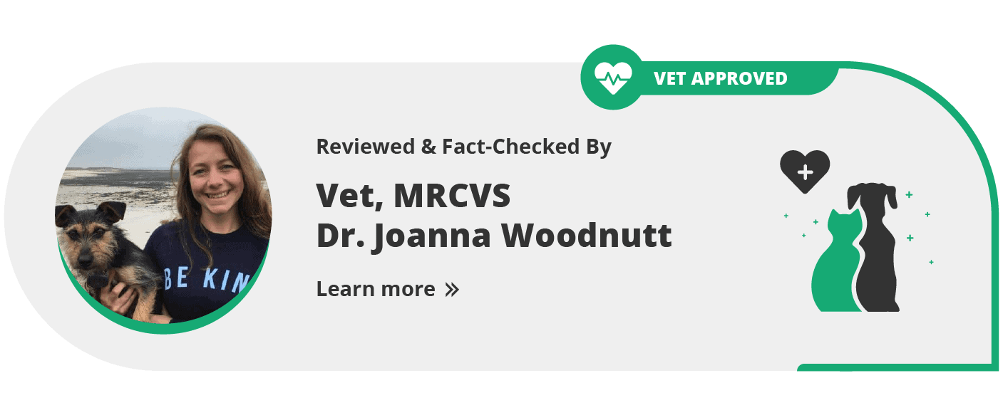 Excitedcats vet approved