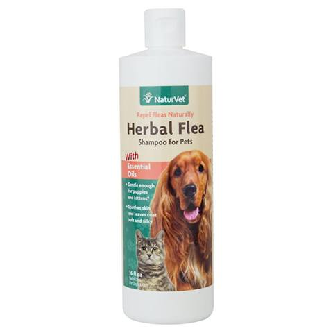 NaturVet Herbal Flea Cat Shampoo