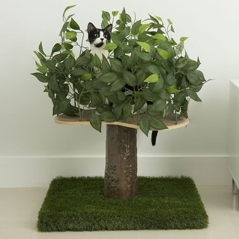 On2Pets Small Square Modern Cat Tree