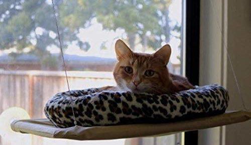 Orangelight Cat Window Perch-BG