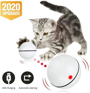 Pakoo Interactive Cat