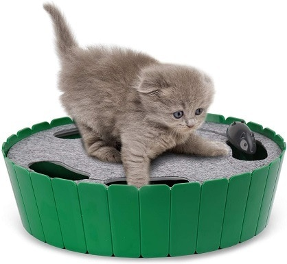 Pawaboo Cat Toy with Running Mouse