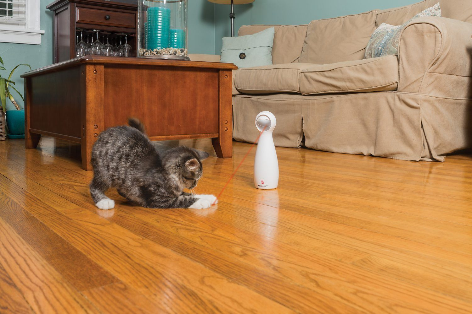 PetSafe Bolt Interactive Laser Cat Toy-FI