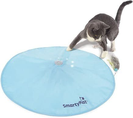 SmartyKat Electronic Concealed Motion Cat Toy