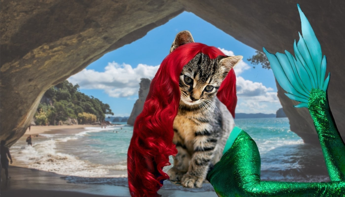 Mermaid Disney Cat