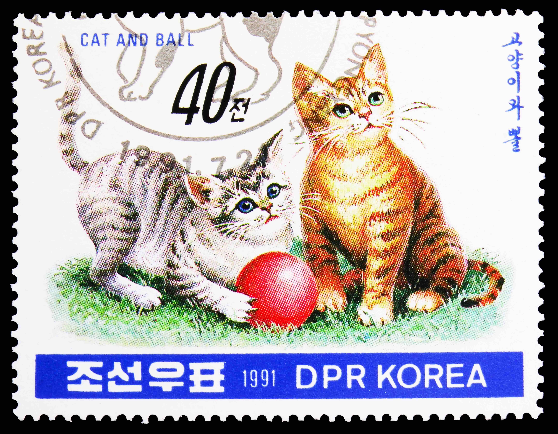 Korean stamp kittens