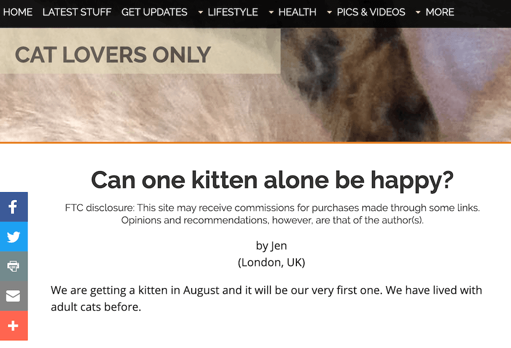 Cat Lovers Only blog