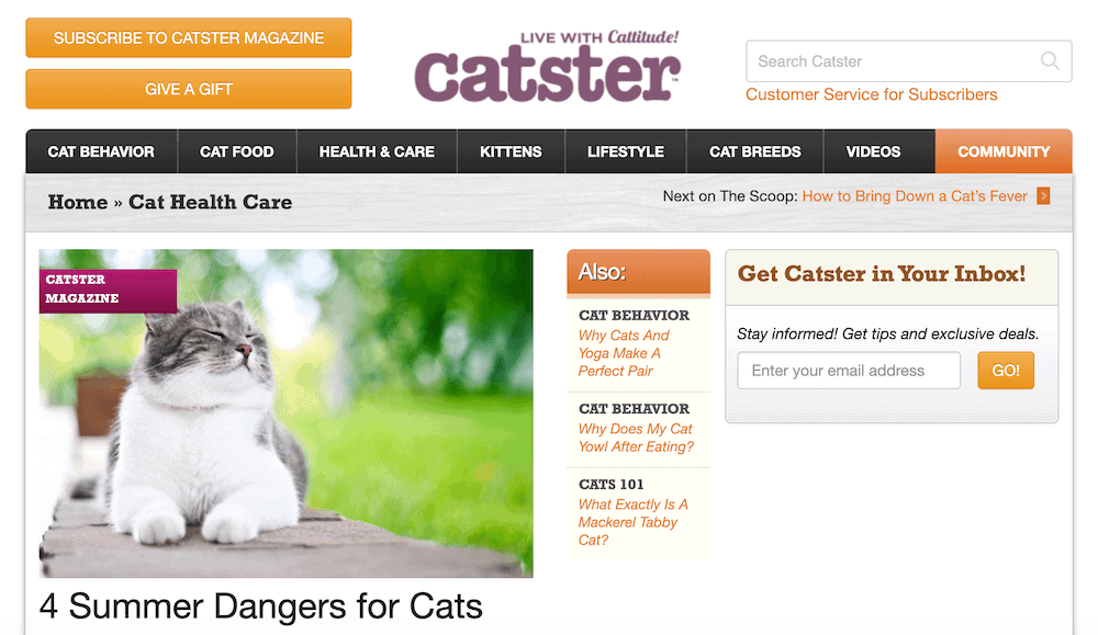 The Catster Magazine