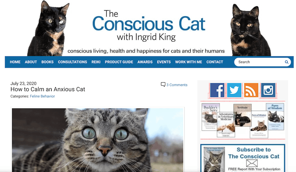 The Conscious Cat blog