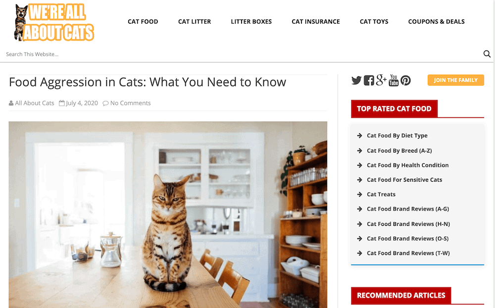 We're All About Cats blog