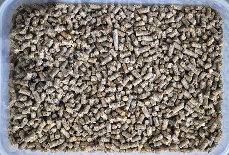 Alfa alfa pellets