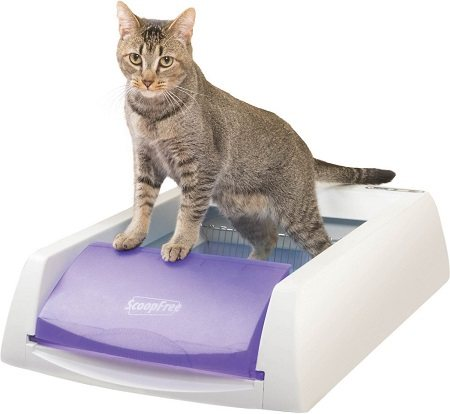 3ScoopFree Original Automatic Cat Litter Box