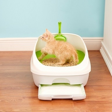 4Tidy Cats Breeze Cat Litter Box System