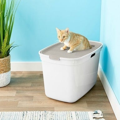 8Frisco Top Entry Cat Litter Box, Gray, Large 23-in