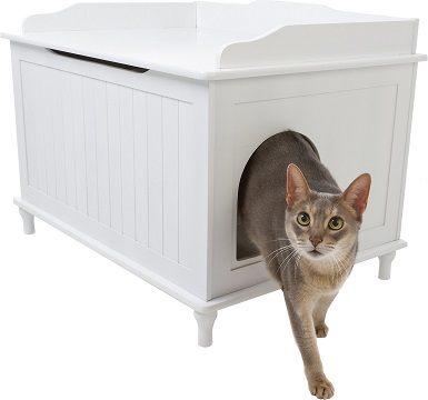 Designer Pet Products Catbox
