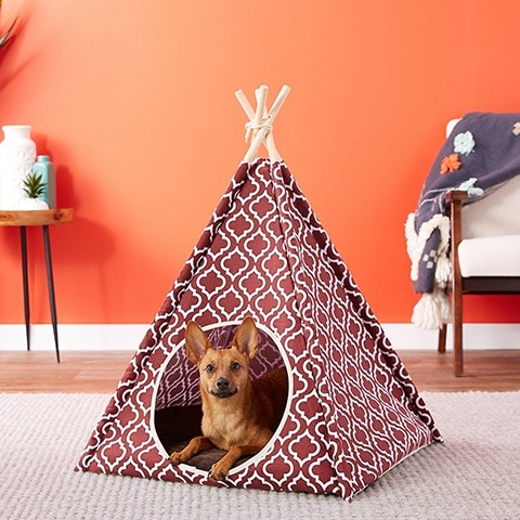 P.L.A.Y. Pet Lifestyle and You Teepee Tent Covered Cat & Dog Bed