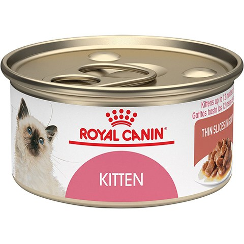 Royal Canin Kitten Thin Slices in Gravy