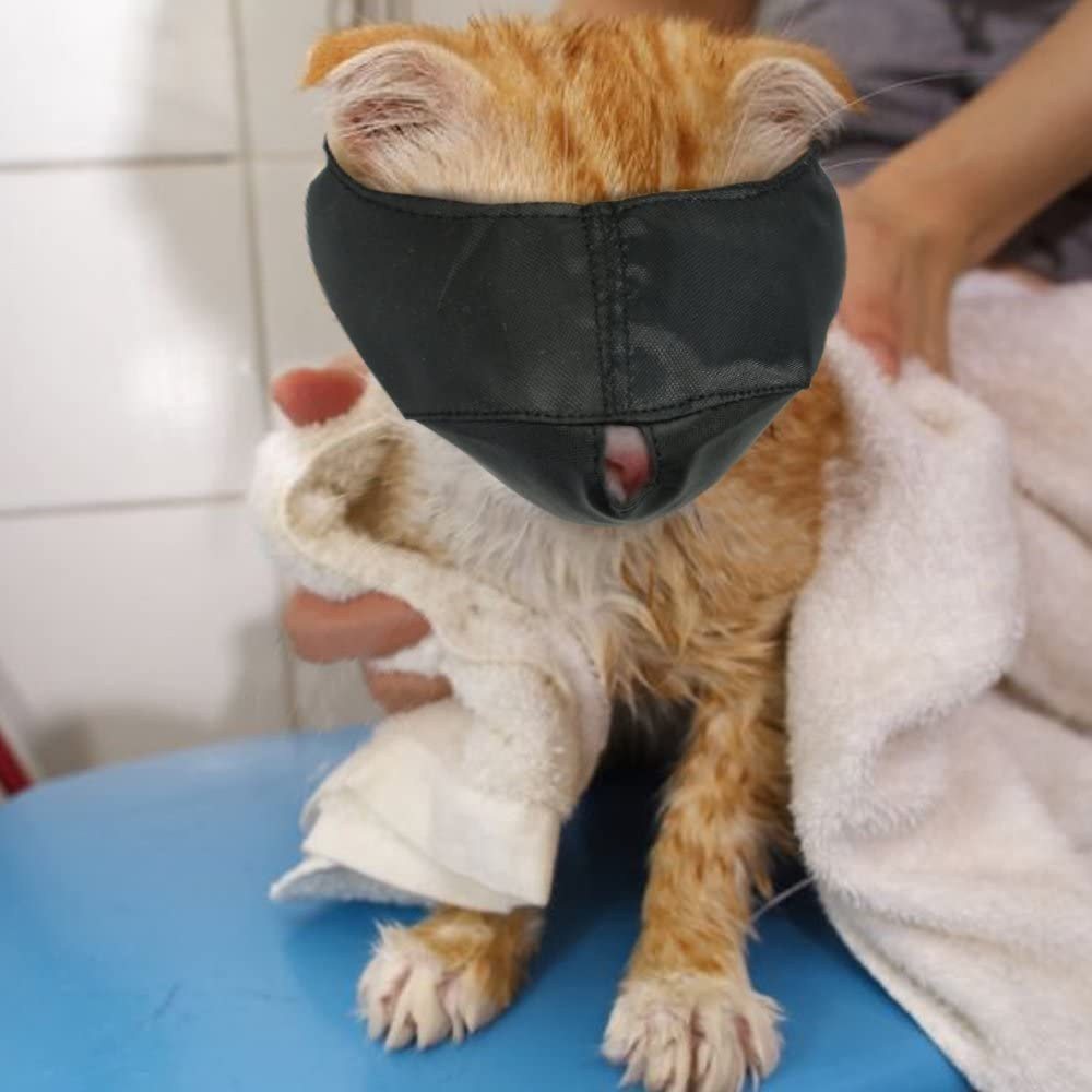 cat wearing Xbes Nylon Cat Muzzles