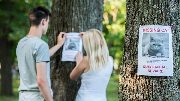 couple putting up missing poster