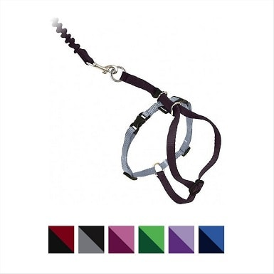1PetSafe Come With Me Kitty Nylon Cat Harness & Leash