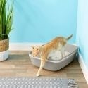 Frisco Sifting Cat Litter Box