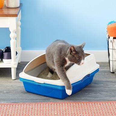 9Van Ness Sifting Cat Litter Pan