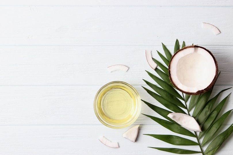 coconut oil, coconuts and green tropical leaves