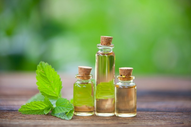 essential oil in beautiful bottles